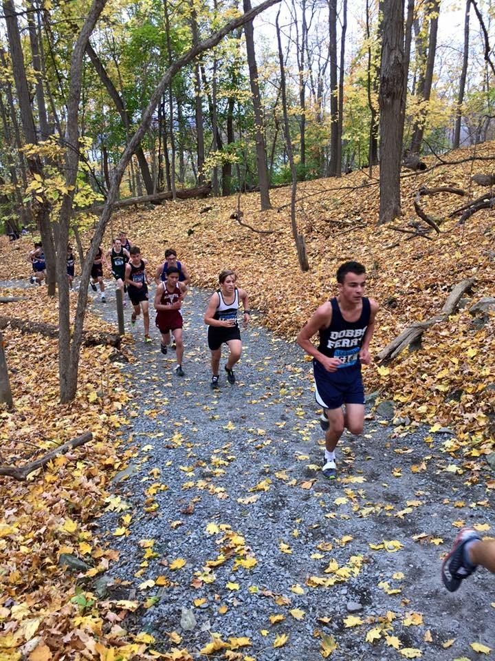 Eighth grader Matt Greco leads a parade of runners up a leaf strewn path during a recent cross country race.